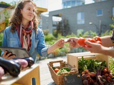 Shopping & Vendor Fairs